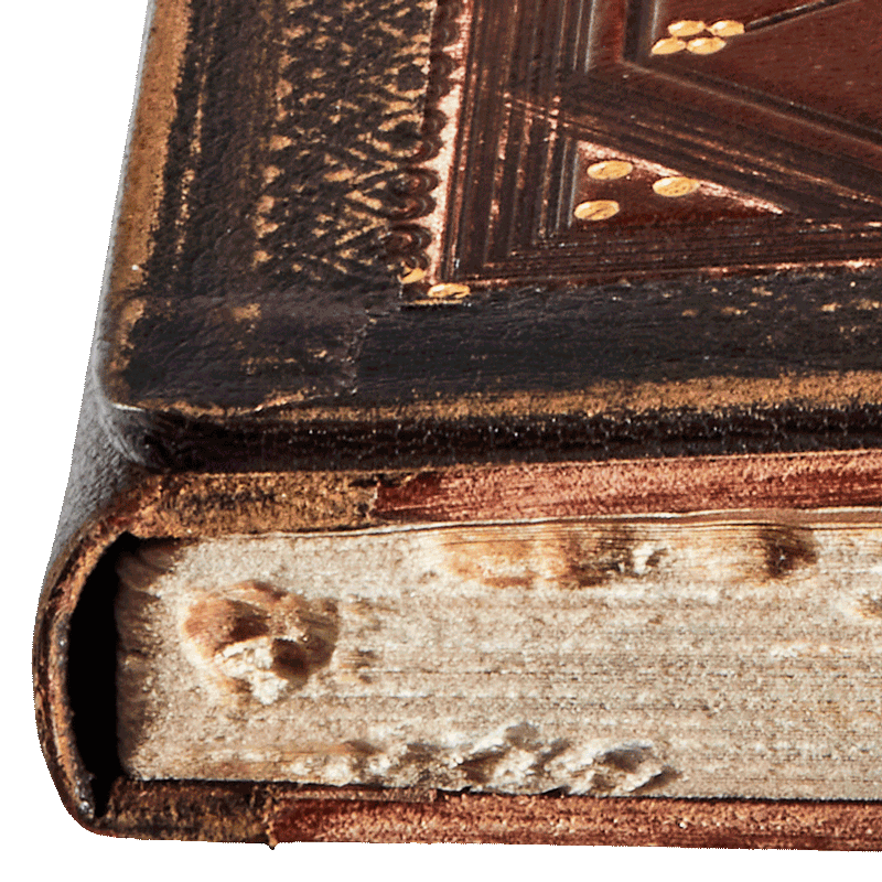"""Hand-torn edges and bookworm. Image from the facsimile. <small><a href=""""https://www.facsimile-editions.com/copyright/"""">© Copyright 2021 Facsimile Editions Ltd</a></small>"""